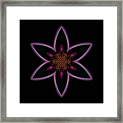 Purple Echinacea Flower Mandala Framed Print