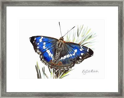 Purple Emperor Butterfly Framed Print by Katy Scott Ricketts