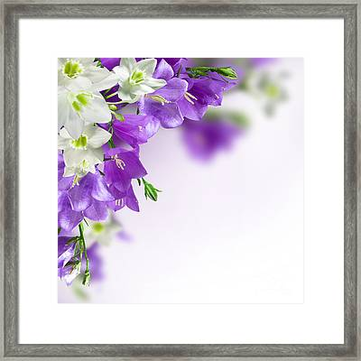 Purple Flower Frames Framed Print by Boon Mee