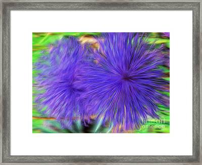 Purple Flowers Framed Print by Kathleen Struckle