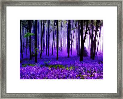 Purple Forest Framed Print by Bruce Nutting