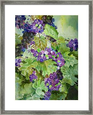 Purple Grapes Framed Print