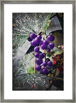 Purple Grapes - Oil Effect Framed Print