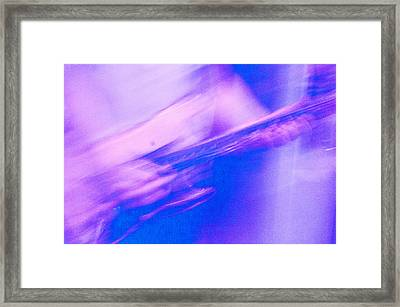 Framed Print featuring the photograph Purple Haze by Alex Lapidus