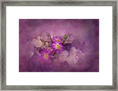 Purple Haze Framed Print by Carla Parris