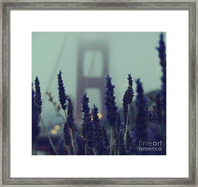 Purple Haze Daze Framed Print by Jennifer Ramirez