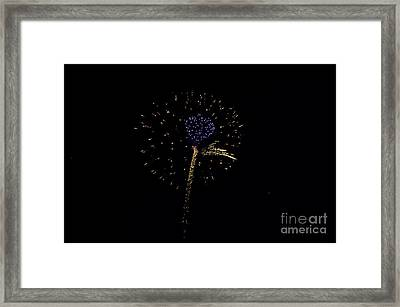 Purple Heart Framed Print