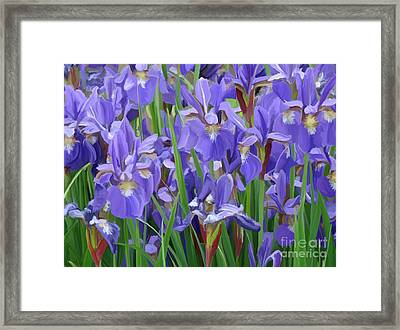 Framed Print featuring the painting Purple Iris Garden by Tim Gilliland