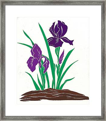Purple Iris Framed Print