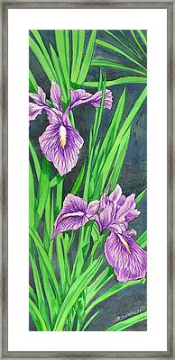 Purple Iris Framed Print by Richard De Wolfe