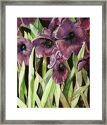 Framed Print featuring the painting Purple Irises by June Holwell