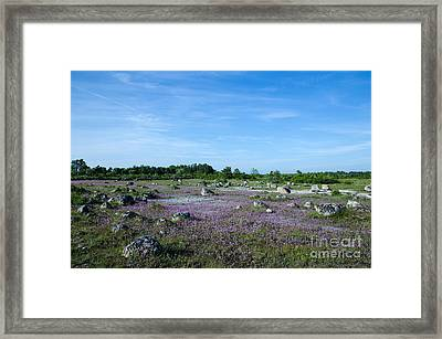 Framed Print featuring the photograph Purple Landscape by Kennerth and Birgitta Kullman