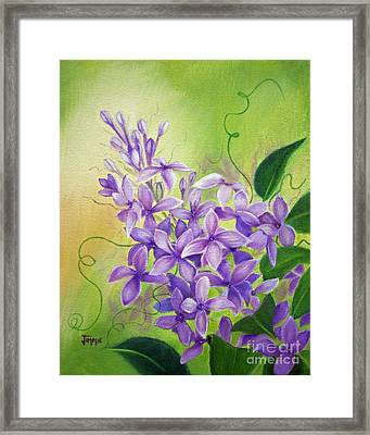 Purple Lilacs Framed Print