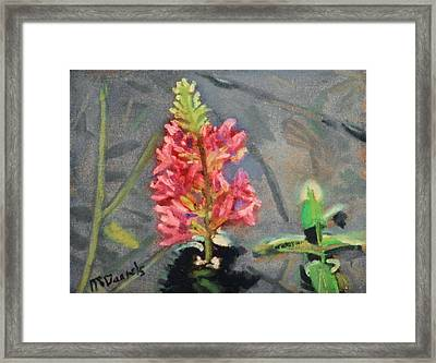 Framed Print featuring the painting Purple Loosestrife by Michael Daniels