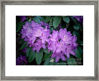 Purple Majesty Framed Print by Michelle Rene Goodhew