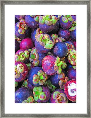 Purple Mangosteen.  Siam Texture.  Framed Print