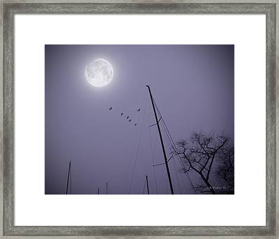 Purple Night Framed Print by Brian Wallace