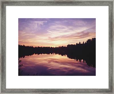 Purple Night Framed Print by Larysa  Luciw
