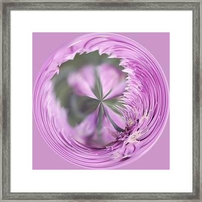 Purple Orb Framed Print by Kim Hojnacki
