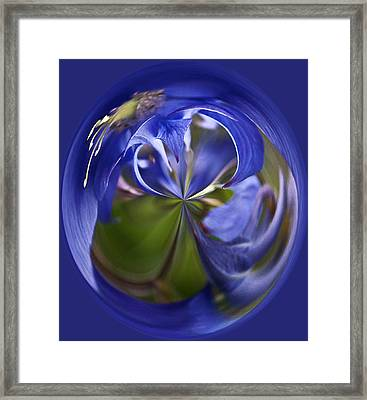 Purple Orb Framed Print by Ron Roberts
