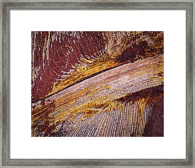 Purple Painted Wood Framed Print by Jozef Jankola