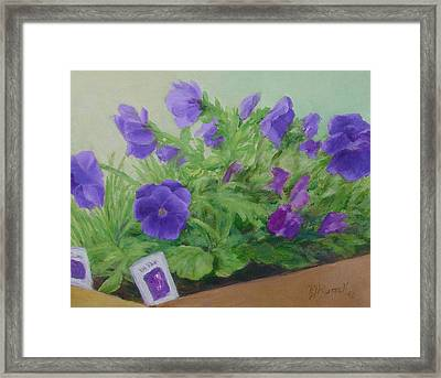 Purple Pansies Colorful Original Oil Painting Flower Garden Art  Framed Print