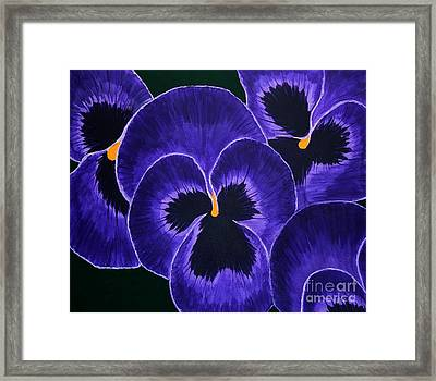 Purple Pansies Dark Faces Framed Print by Barbara Griffin