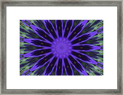 Purple Pansy Star Graphic Art Framed Print
