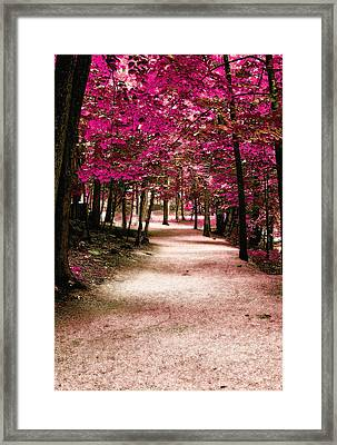 Purple Pass Framed Print