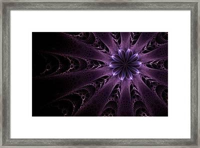 Purple Passion Framed Print by GJ Blackman