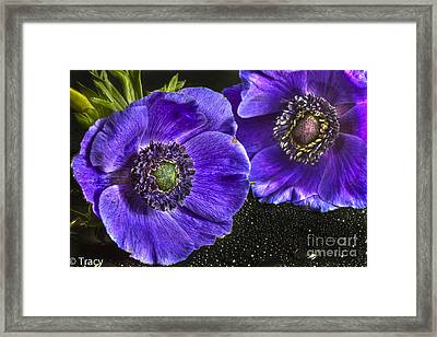 Purple Passion Framed Print by Tracy  Hall