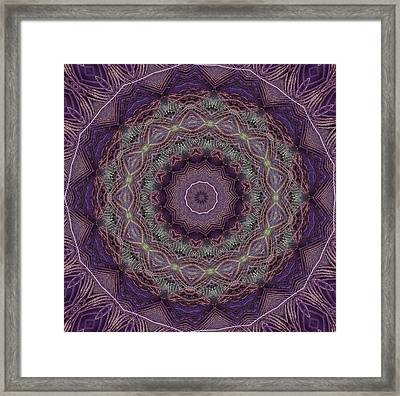 Purple Peacock Framed Print by Yvette Pichette