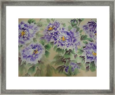 Purple Peony 012 Framed Print by Dongling Sun