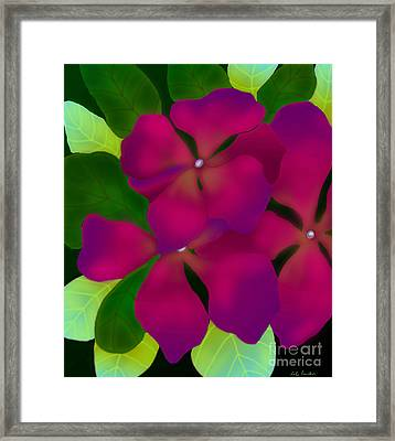 Purple Periwinkles Framed Print by Latha Gokuldas Panicker