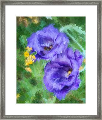 Purple Petals Framed Print by Ike Krieger