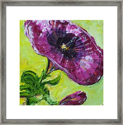 Purple Petunia Framed Print by Paris Wyatt Llanso