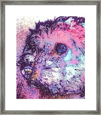 Purple Pooch Framed Print by Lady Ex