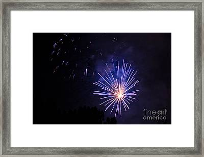 Purple Power Framed Print by Suzanne Luft