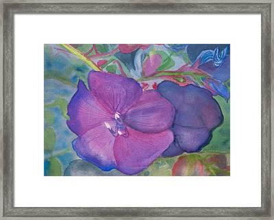 Purple Princess Framed Print by Charlotte Hickcox