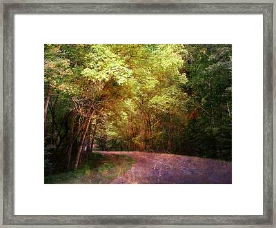 Purple Road Framed Print by Terry Eve Tanner