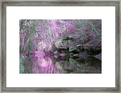 Framed Print featuring the photograph Purple Rock Reflection by Lorna Rogers Photography