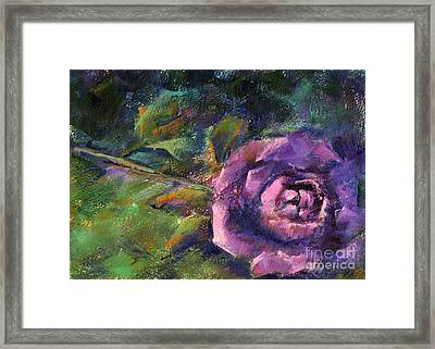 Purple Rose Framed Print by Addie Hocynec