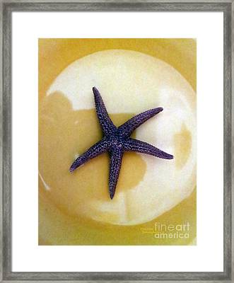 Purple Sea Star Framed Print by Patricia Januszkiewicz