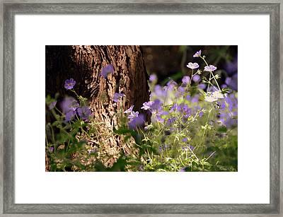 Purple Splash Framed Print