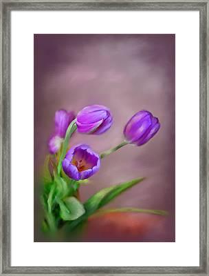 Purple Spring Framed Print