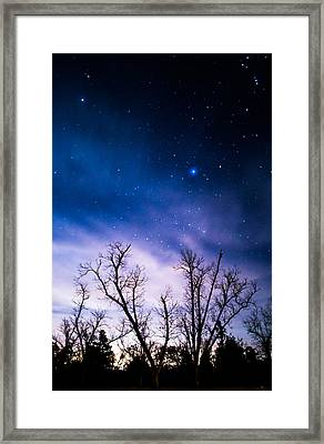 Purple Stars Framed Print by Shelby  Young