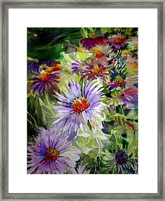 Purple Stem Asters Framed Print by Mindy Newman