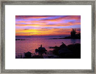 Purple Sunset 2 Framed Print by Sheila Byers