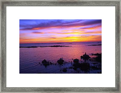 Purple Sunset Framed Print by Sheila Byers