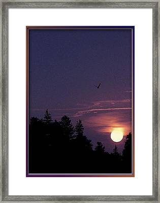 Framed Print featuring the photograph Purple Sunset With Sea Gull by Peter v Quenter